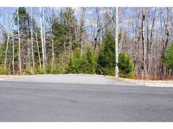 64 Grandview Road, Conway, NH 03818 (MLS #4488041) :: Signature Properties of Vermont