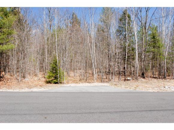 73 Madeline Way, Conway, NH 03818 (MLS #4488063) :: Signature Properties of Vermont