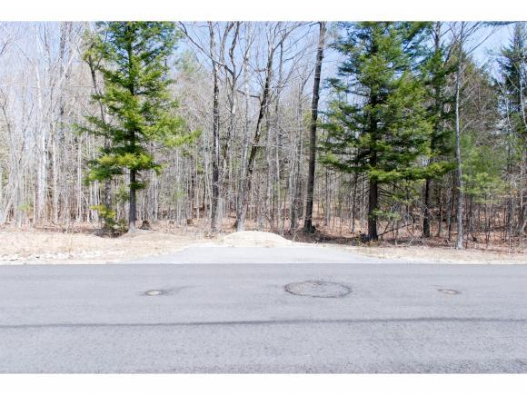76 Madeline Way, Conway, NH 03818 (MLS #4488069) :: Signature Properties of Vermont