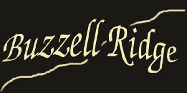 Lot 11 Buzzell Ridge Road #12 Lot 15.L, Sandwich, NH 03227 (MLS #4614297) :: Keller Williams Coastal Realty