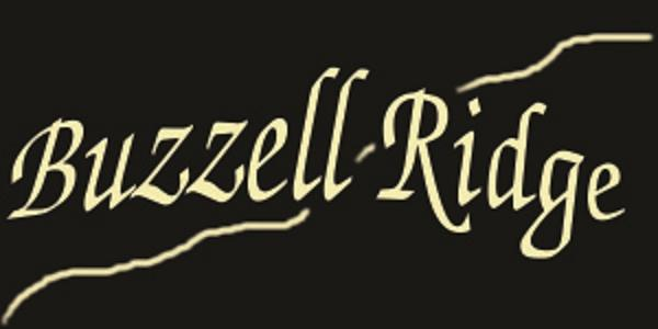 Lot 14 Buzzell Ridge Road #12 Lot 15.O, Sandwich, NH 03227 (MLS #4614328) :: Keller Williams Coastal Realty