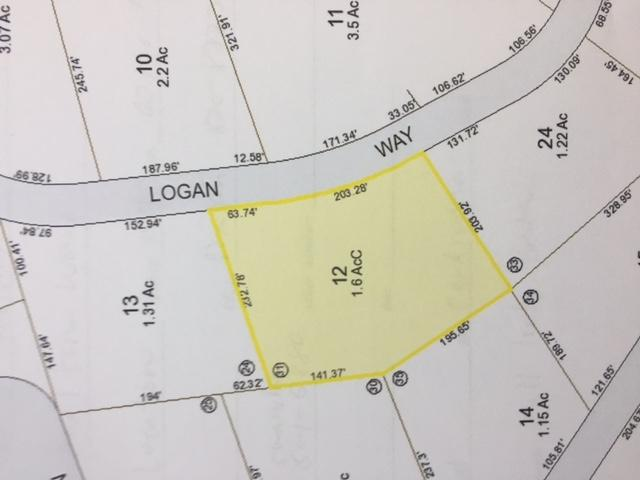 20 Logan Way, Ossipee, NH 03864 (MLS #4635289) :: Keller Williams Coastal Realty