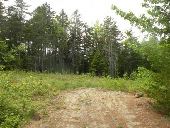 Lot 23 Grandpa Harry's Lane, Carroll, NH 03595 (MLS #4656128) :: Keller Williams Coastal Realty