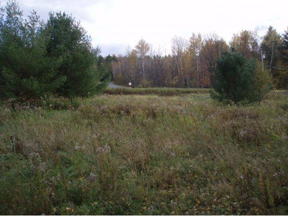 00 Applewood Village Lot 16, Derby, VT 05829 (MLS #4666948) :: Lajoie Home Team at Keller Williams Realty