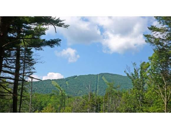 2 Knolls Road, Warren, VT 05674 (MLS #4676338) :: The Hammond Team
