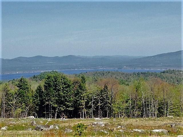 85 Knox Mountain Road #1, Ossipee, NH 03864 (MLS #4677908) :: Keller Williams Coastal Realty