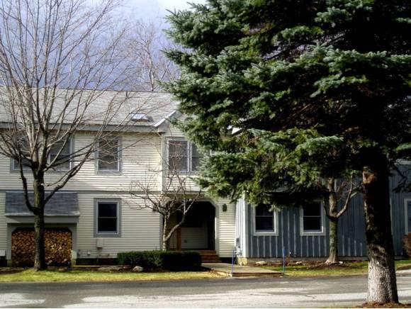 88C Greenspring Road 88C, Dover, VT 05356 (MLS #4680394) :: The Gardner Group