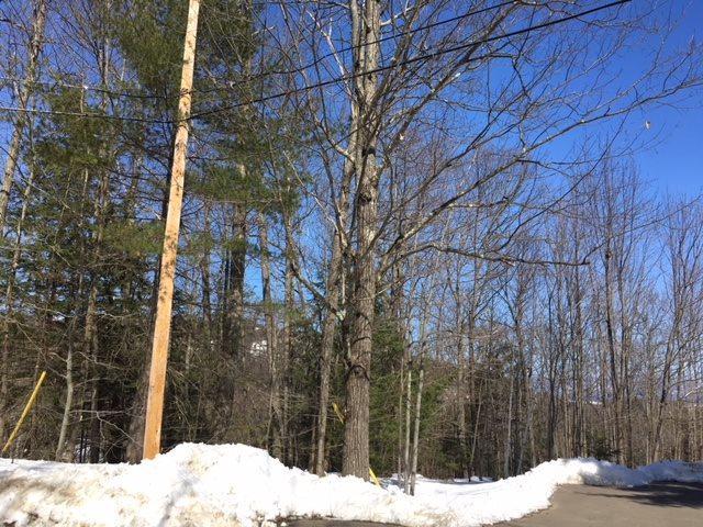 68 White Birch Drive, Gilford, NH 03249 (MLS #4681974) :: Keller Williams Coastal Realty