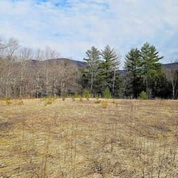 2920 Lincoln Hill Road, Hinesburg, VT 05461 (MLS #4688241) :: The Gardner Group