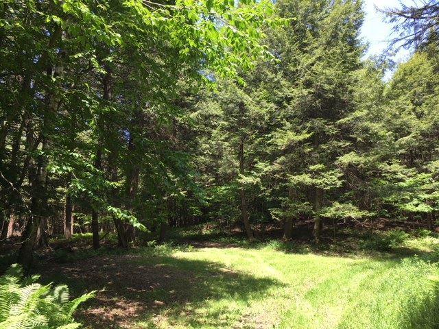 0 Miller Woods Drive, Barre Town, VT 05641 (MLS #4700272) :: The Gardner Group