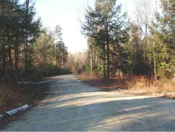 Cole Pond Road - Photo 1