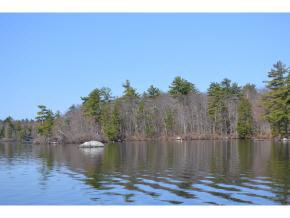 65.4 Gansy Island, Moultonborough, NH 03254 (MLS #4741171) :: Hergenrother Realty Group Vermont