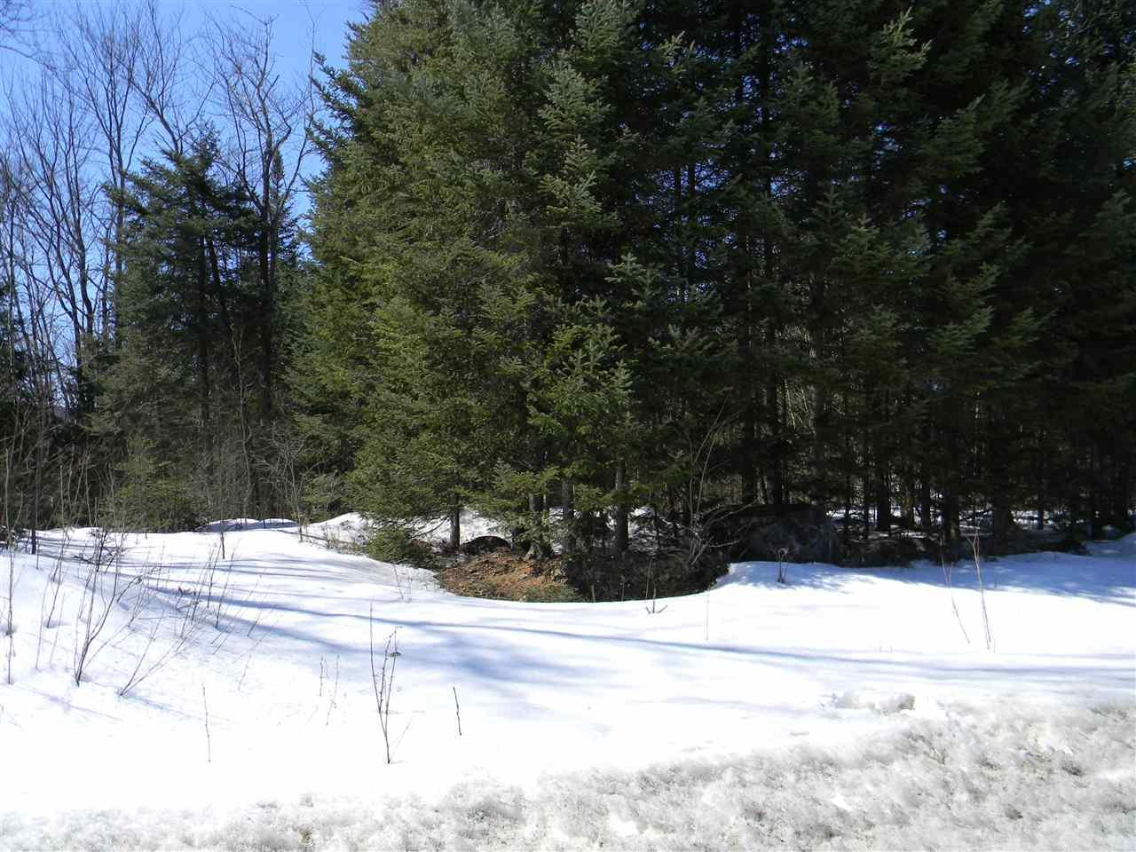 Lot 9 Sunny View Drive - Photo 1
