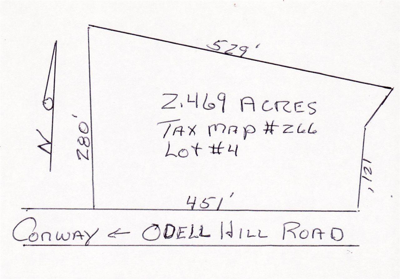 0 Odell Hill Road - Photo 1
