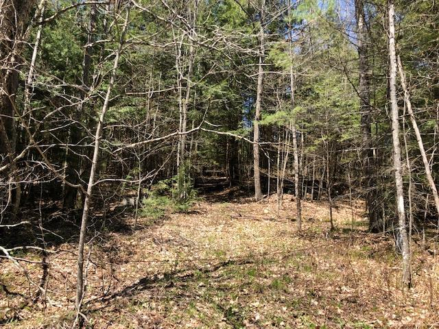Hardy Hill Road, Lebanon, NH 03766 (MLS #4750149) :: Hergenrother Realty Group Vermont