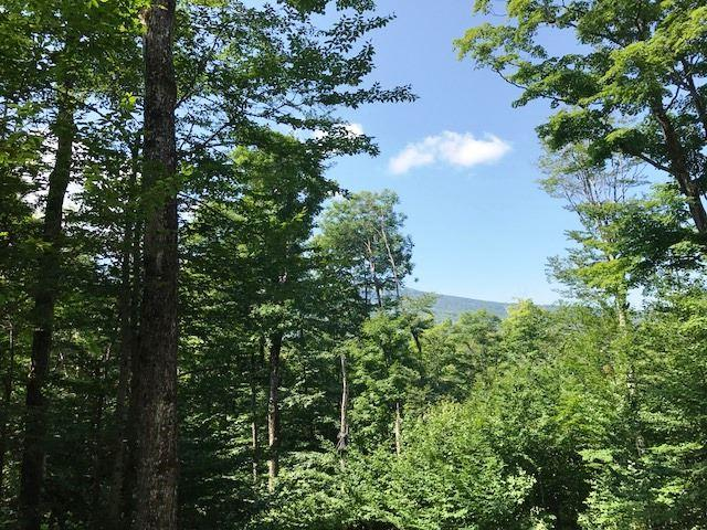 Lots 5 & 6 Forest Farms 5&6, Winhall, VT 05340 (MLS #4755024) :: Hergenrother Realty Group Vermont
