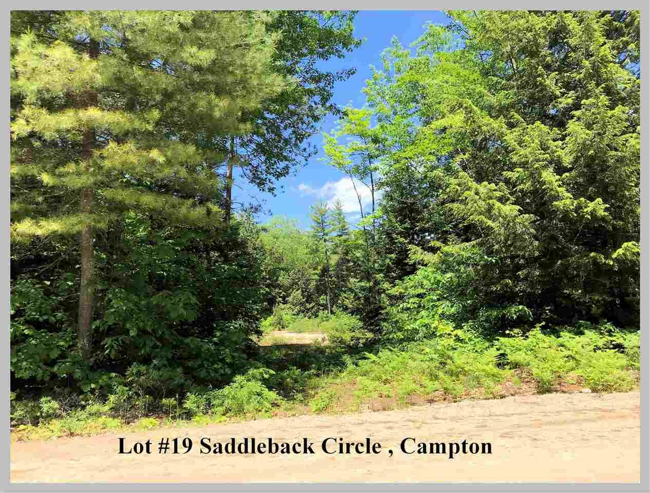 Lot #19 Saddleback Circle - Photo 1