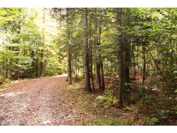 349 Bobcat Run, Londonderry, VT 05155 (MLS #4764797) :: Parrott Realty Group