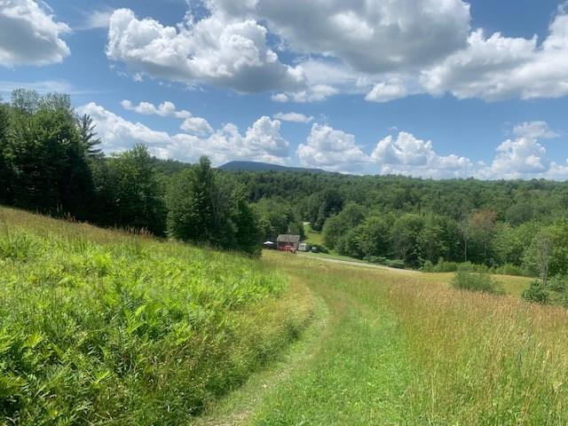 00 Elmore Pond Road, Wolcott, VT 05680 (MLS #4766596) :: Hergenrother Realty Group Vermont