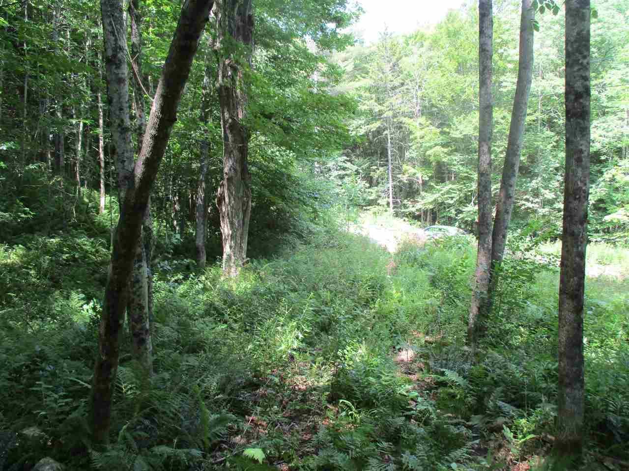 0 Twin Ponds Road - Photo 1