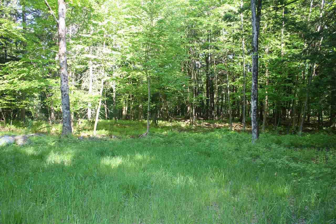Moose Run Lane - Photo 1