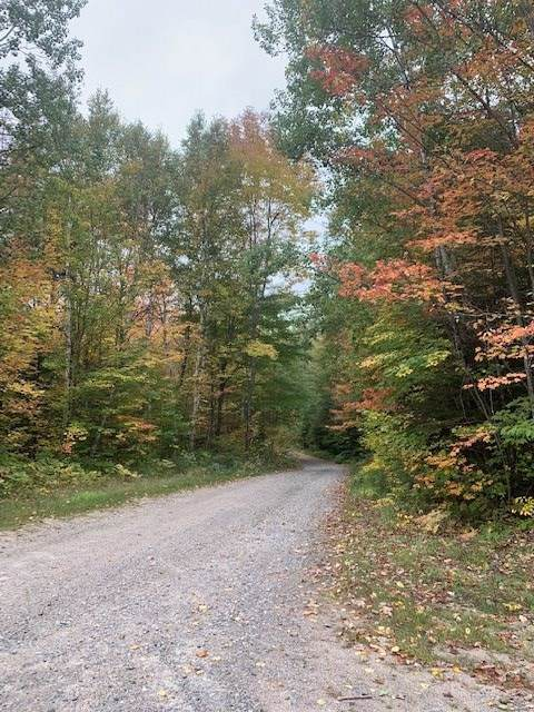 Lot 57 South Pond Road - Photo 1