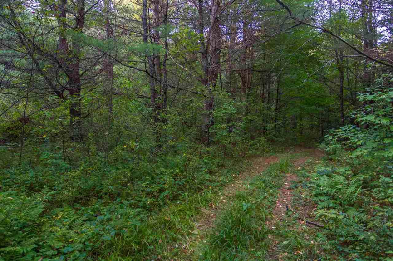 Lost River Road - Photo 1