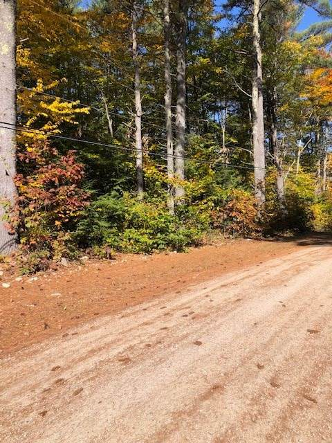 Belleau Boulevard, Wakefield, NH 03872 (MLS #4782146) :: Keller Williams Coastal Realty
