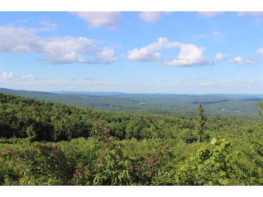 00 Higley Hill Road, Dover, VT 05341 (MLS #4784654) :: Hergenrother Realty Group Vermont