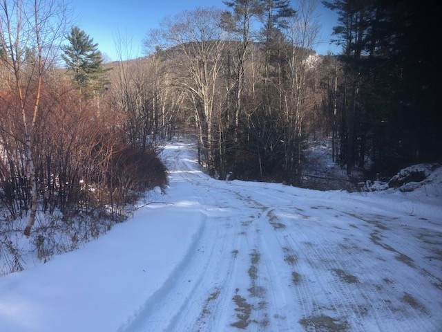 00 Route 302 - Photo 1