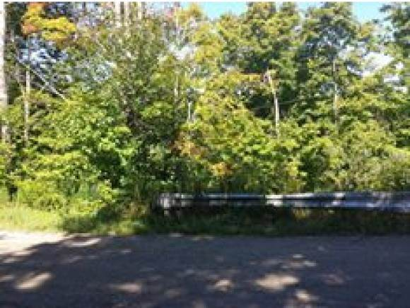 A French Settlement Road, Lincoln, VT 05443 (MLS #4791454) :: Hergenrother Realty Group Vermont
