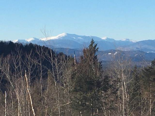 Lot 7 Bickford Road, Madison, NH 03849 (MLS #4792295) :: Hergenrother Realty Group Vermont