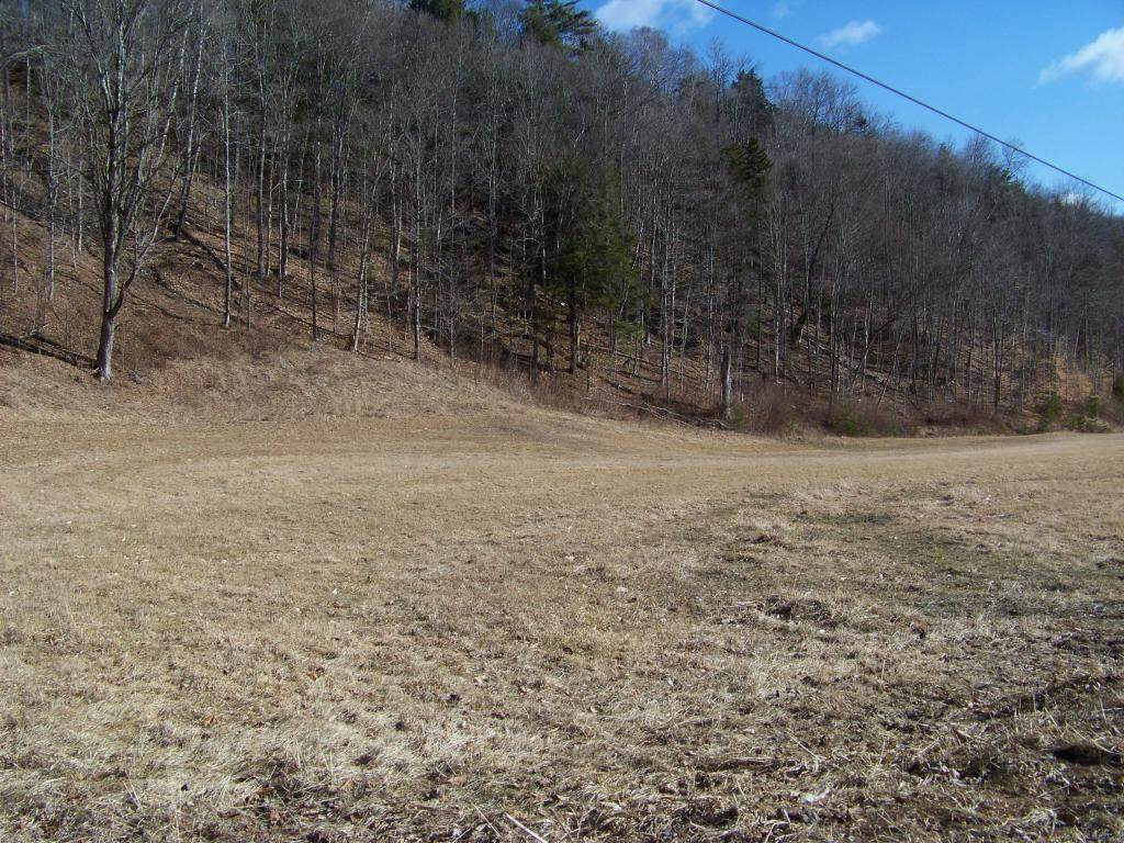 4995 Brandon Mt Road - Photo 1