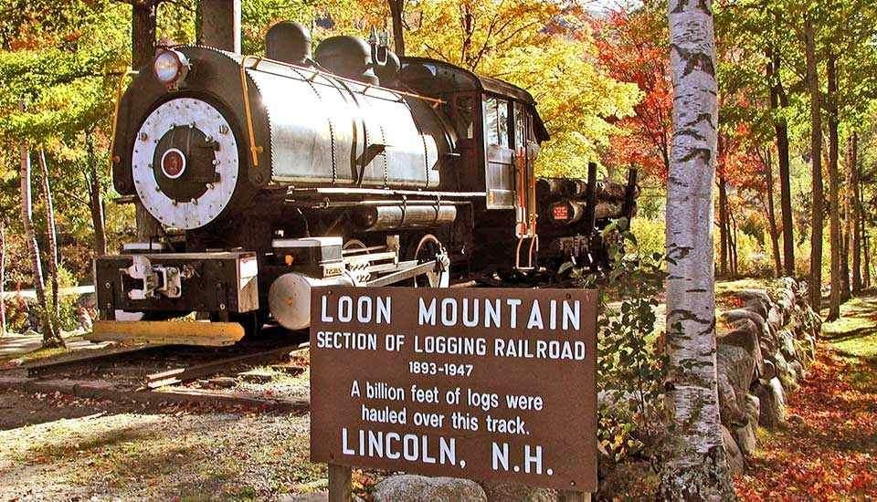 90 Loon Mountain Road - Photo 1