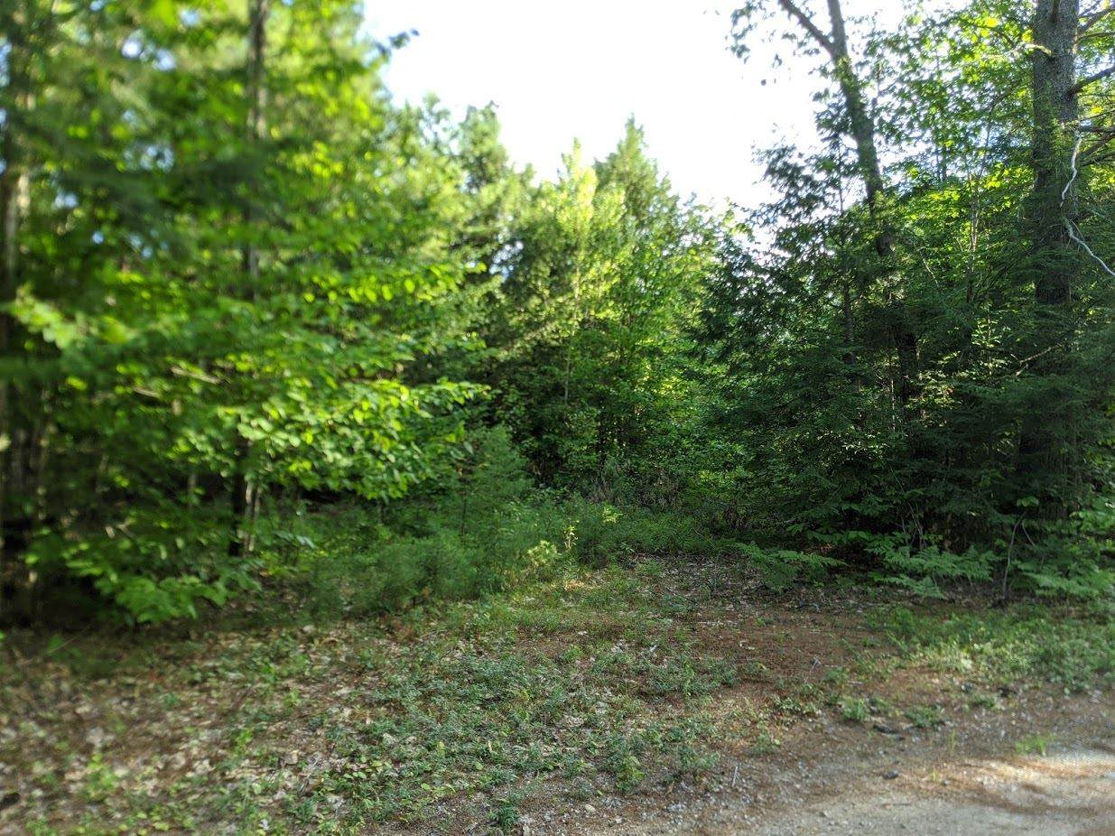 00 Deer River Road - Photo 1