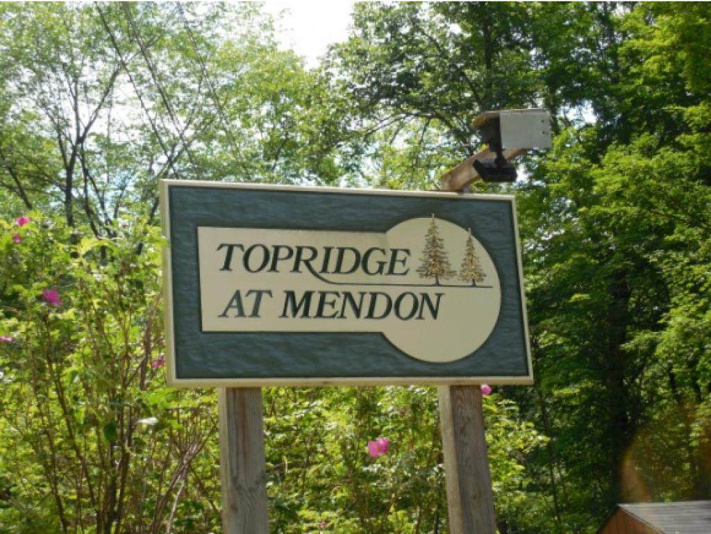 120 Top Ridge - Photo 1