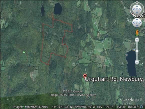 0000 Urquhart - Forest Trail Road - Photo 1