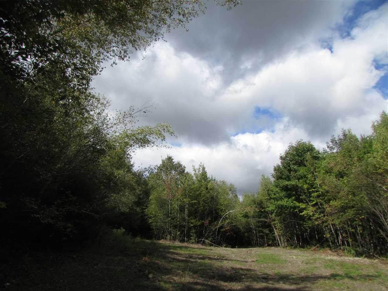 0 Turcott Road - Photo 1