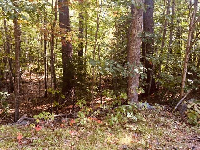258 Governors Road, Brookfield, NH 03872 (MLS #4830459) :: Parrott Realty Group