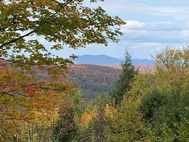 538 Skyline Drive, Pomfret, VT 05053 (MLS #4832598) :: Signature Properties of Vermont