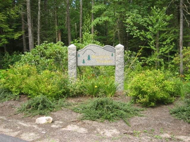 20 Lyndsay Lane, Tuftonboro, NH 03850 (MLS #4836687) :: Lajoie Home Team at Keller Williams Gateway Realty