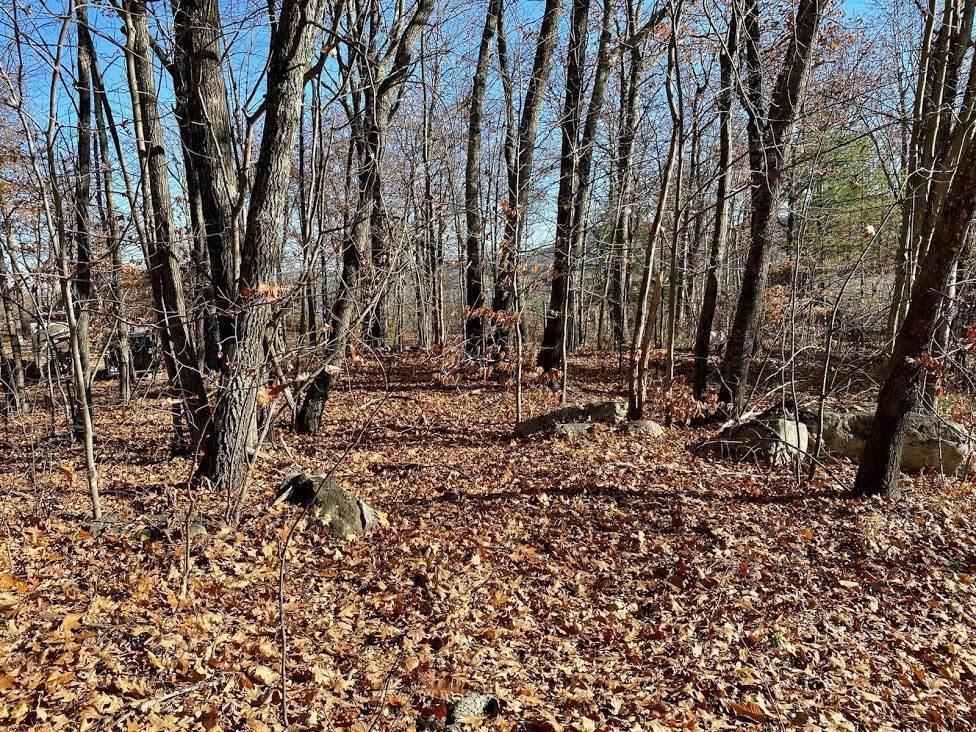 51 Oak Ridge Road - Photo 1