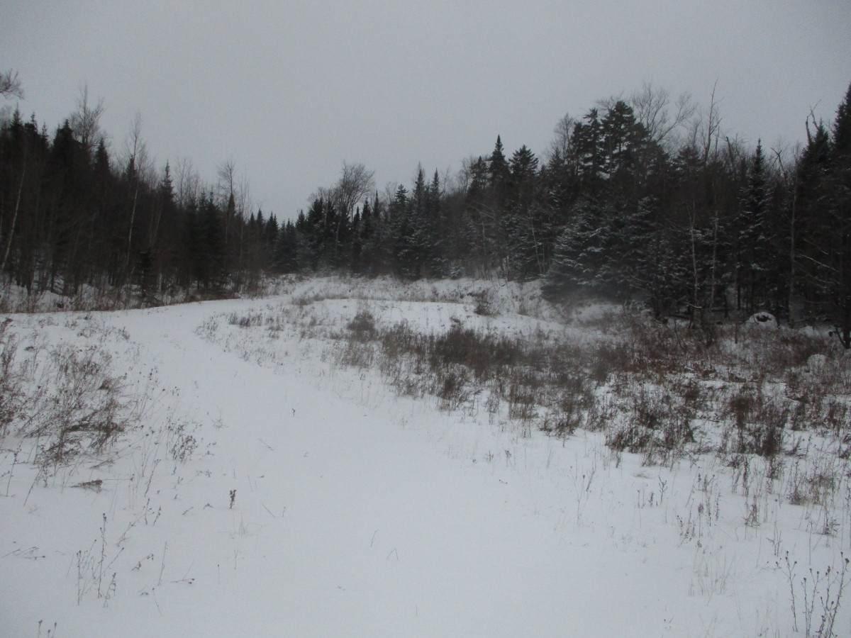 1328 East Hill Road - Photo 1