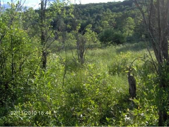 Hebard Hill Road Lot 3, Randolph, VT 05060 (MLS #4844847) :: Keller Williams Coastal Realty