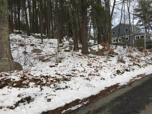14 Varney Point Road Right, Gilford, NH 03249 (MLS #4845028) :: Jim Knowlton Home Team