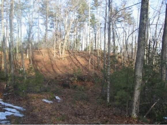 0 Scripps Lane E-32, Mason, NH 03048 (MLS #4845667) :: Signature Properties of Vermont