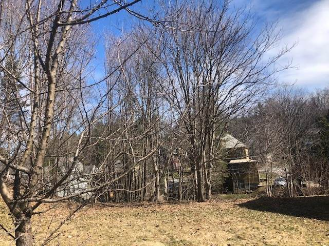 20 Marvin Street, Montpelier, VT 05602 (MLS #4854478) :: Signature Properties of Vermont