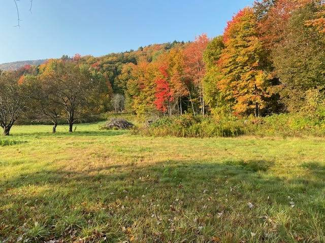 64 Beech Hill Road, Stowe, VT 05672 (MLS #4855766) :: The Gardner Group