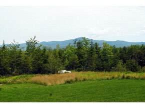 Lot 10 Farm Pond Road - Photo 1