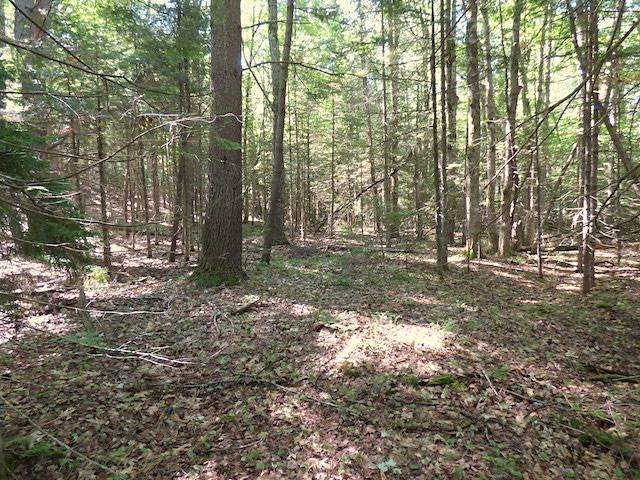 00 Route 114 Road, Sutton, NH 03260 (MLS #4868391) :: Parrott Realty Group